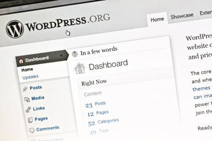 Step by step how to integrate WordPress plugin with Lemax Software